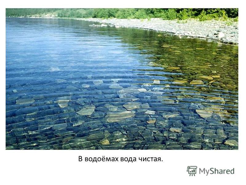 В водоёмах вода чистая.