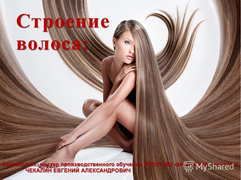 Строение волоса: Разработчик: мастер производственного обучения ГБПОУ МО «Можайский техникум» ЧЕКАЛИН ЕВГЕНИЙ АЛЕКСАНДРОВИЧ