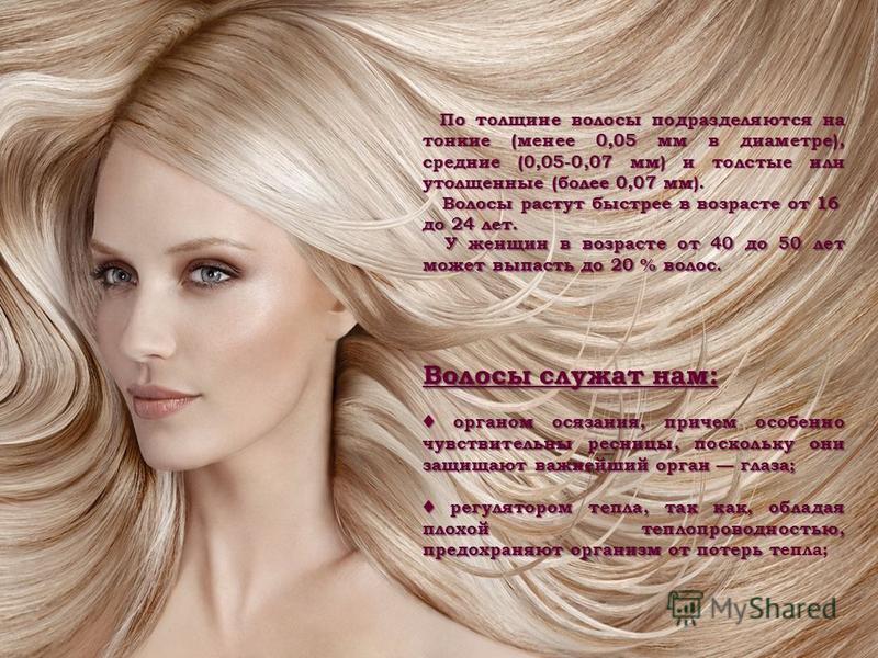 По толщине волосы подразделяются на тонкие (менее 0,05 мм в диаметре), средние (0,05-0,07 мм) и толстые или утолщенные (более 0,07 мм). По толщине волосы подразделяются на тонкие (менее 0,05 мм в диаметре), средние (0,05-0,07 мм) и толстые или утолще