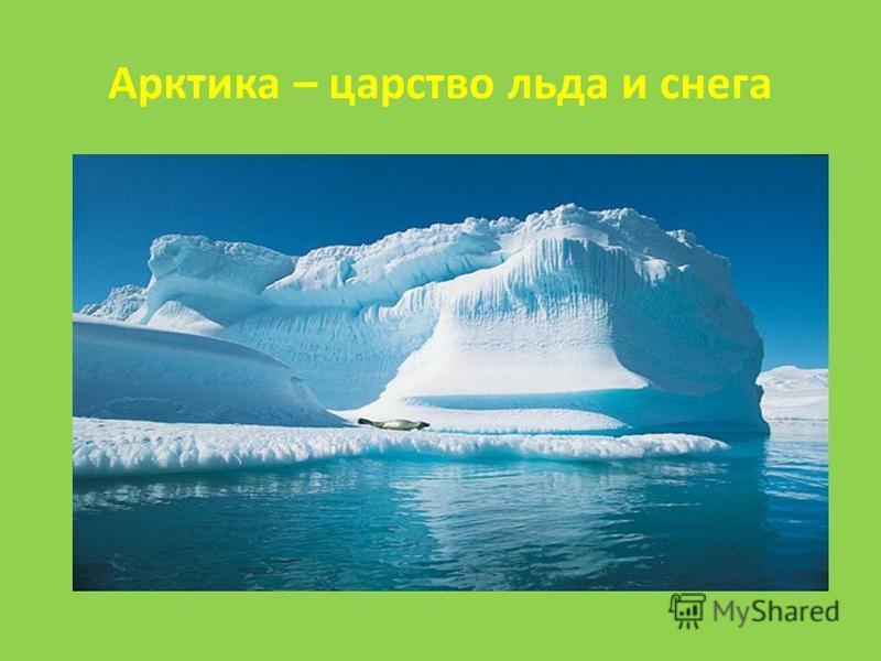 Арктика – царство льда и снега
