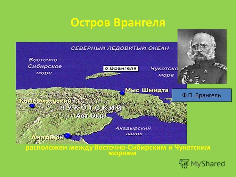 Остров Врангеля расположен между Восточно-Сибирским и Чукотским морями Ф.П. Врангель