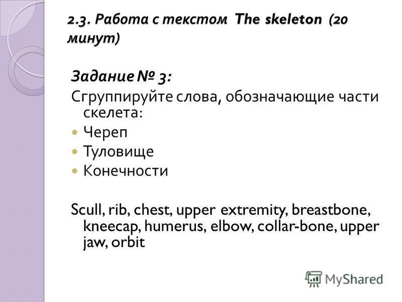 2.3. Работа с текстом The skeleton (20 минут ) Задание 3: Сгруппируйте слова, обозначающие части скелета : Череп Туловище Конечности Scull, rib, chest, upper extremity, breastbone, kneecap, humerus, elbow, collar-bone, upper jaw, orbit