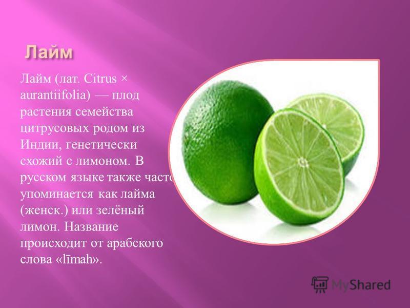 Лайм Лайм ( лат. Citrus × aurantiifolia) плод растения семейства цитрусовых родом из Индии, генетически схожий с лимоном. В русском языке также часто упоминается как лайма ( женский.) или зелёный лимон. Название происходит от арабского слова «līmah».