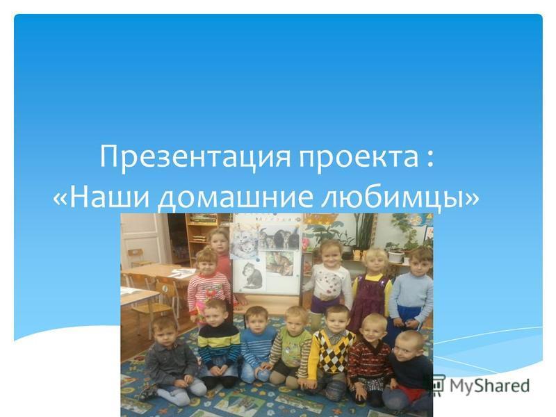 Презентация проекта : «Наши домашние любимцы»
