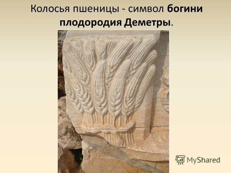 Колосья пшеницы - символ богини плодородия Деметры.