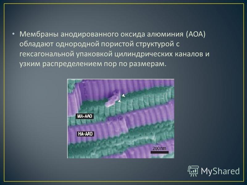 Мембраны анодированного оксида алюминия ( АОА ) обладают однородной пористой структурой с гексагональной упаковкой цилиндрических каналов и узким распределением пор по размерам.