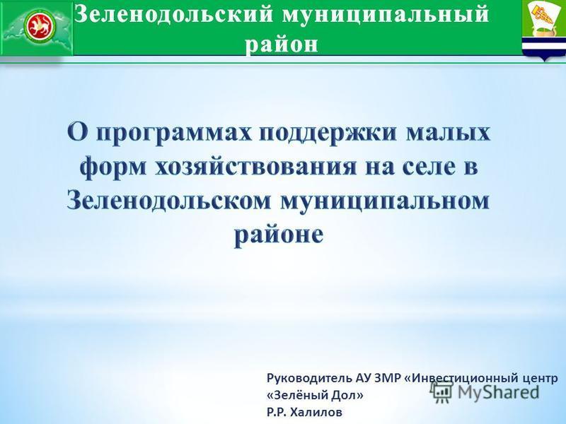 Руководитель АУ ЗМР «Инвестиционный центр «Зелёный Дол» Р.Р. Халилов