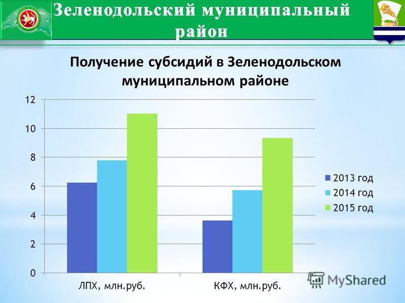 Получение субсидий в Зеленодольском муниципальном районе