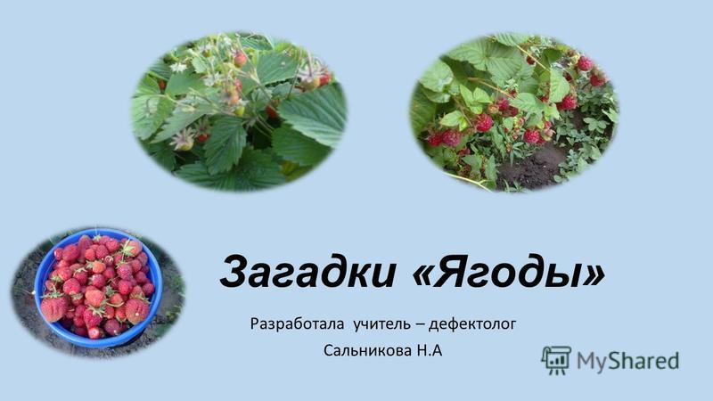 Загадки «Ягоды» Разработала учитель – дефектолог Сальникова Н.А