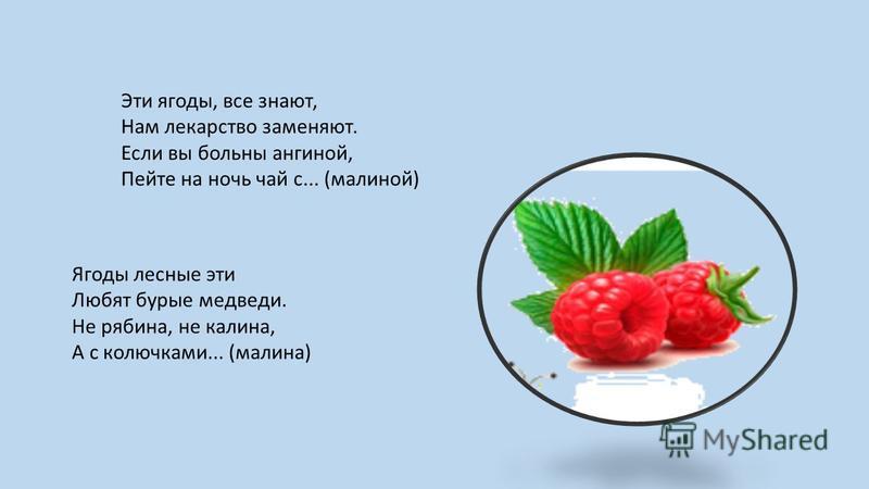 Эти ягоды, все знают, Нам лекарство заменяют. Если вы больны ангиной, Пейте на ночь чай с... (малиной) Ягоды лесные эти Любят бурые медведи. Не рябина, не калина, А с колючками... (малина)