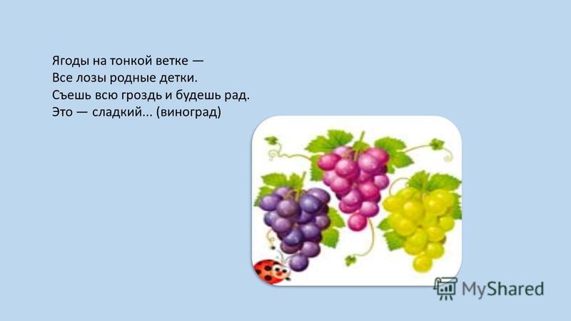 Ягоды на тонкой ветке Все лозы родные детки. Съешь всю гроздь и будешь рад. Это сладкий... (виноград)