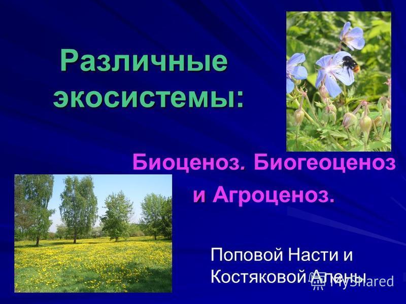 Различные экосистемы:. Биоценоз. Биогеоценоз и. и Агроценоз. Поповой Насти и Костяковой Алены