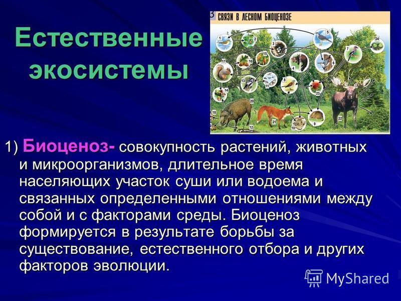 Естественные экосистемы 1) Биоценоз- совокупность растений, животных и микроорганизмов, длительное время населяющих участок суши или водоема и связанных определенными отношениями между собой и с факторами среды. Биоценоз формируется в результате борь