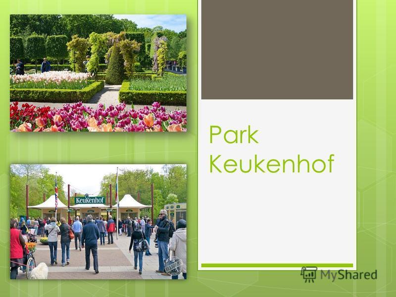 Park Keukenhof