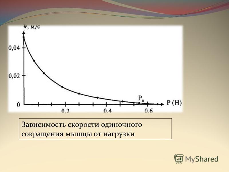 Зависимость скорости одиночного сокращения мышцы от нагрузки