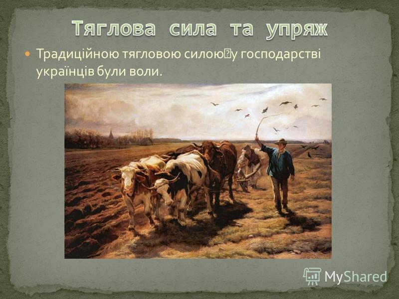 Традиційною тягловою силою у господарстві українців були воли.
