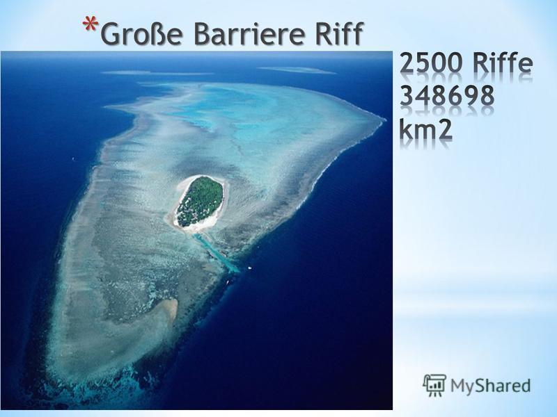 * Große Barriere Riff