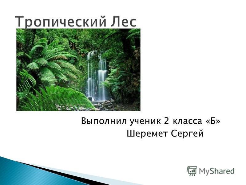 Выполнил ученик 2 класса «Б» Шеремет Сергей