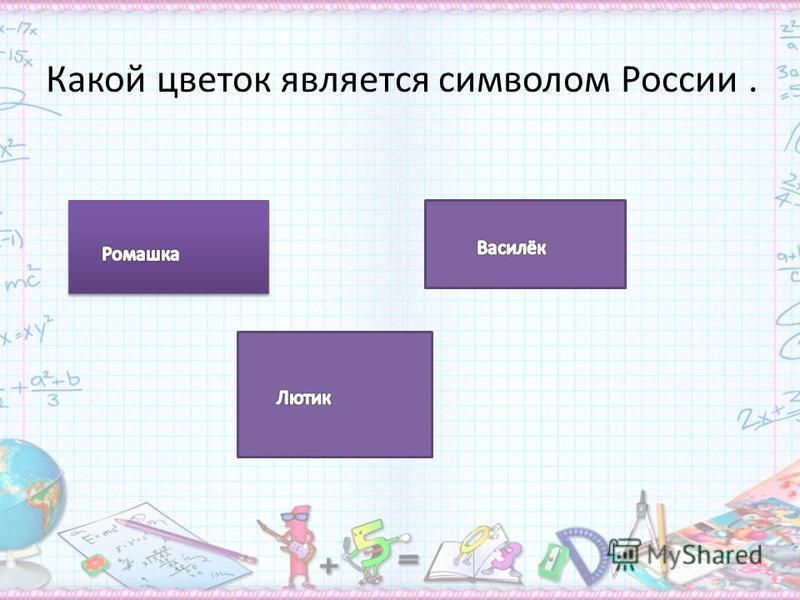 Какой цветок является символом России.