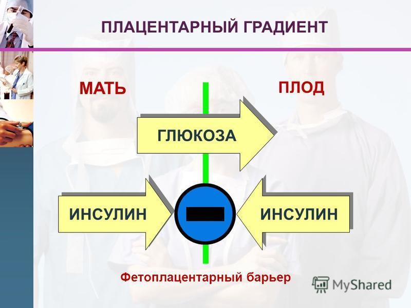 МАТЬ ПЛОД ГЛЮКОЗА ИНСУЛИН Фетоплацентарный барьер ПЛАЦЕНТАРНЫЙ ГРАДИЕНТ