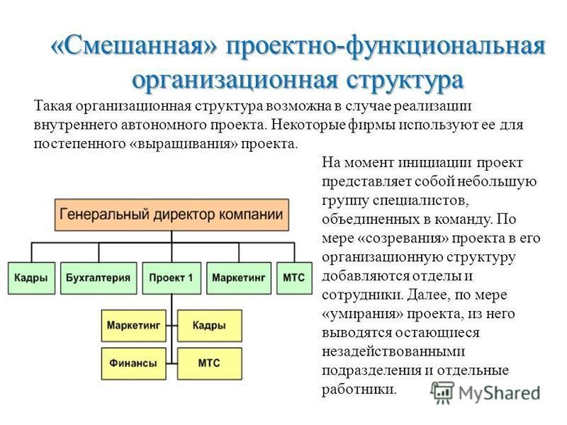 «Смешанная» проектно-функциональная организационная структура Такая организационная структура возможна в случае реализации внутреннего автономного проекта. Некоторые фирмы используют ее для постепенного «выращивания» проекта. На момент инициации прое