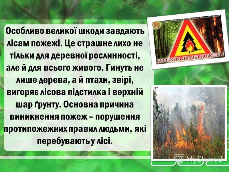 Разом з тим, кожного року знищуються мільйони гектарів лісів. Згідно з даними ООН площа лісів щорічно зменшується на 25 мільйонів гектарів, що складає 1% від наявних сьогодні лісів.