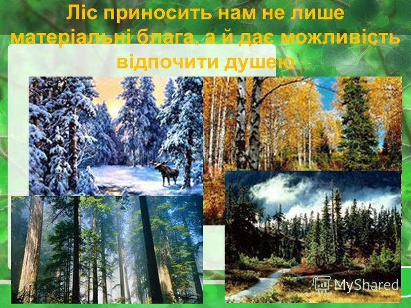 ЗАПАМ ЯТАЙ ПРОСТІ ПРАВИЛА !!! Не кидайте в лісі недопалки! Не паліть багаття поблизу дерев! Розпалюйте вогнище, по можливості, на місці попереднього! Місце розпалювання вогню обкладіть камінням чи обсипте землею (піском)! Не залишайте вогнище без наг