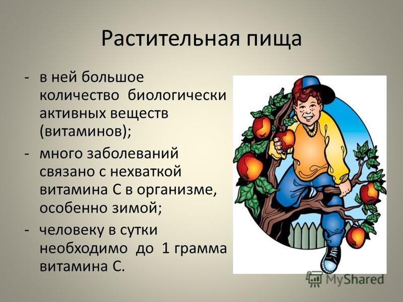 Растительная пища -в ней большое количество биологически активных веществ (витаминов); -много заболеваний связано с нехваткой витамина С в организме, особенно зимой; -человеку в сутки необходимо до 1 грамма витамина С.
