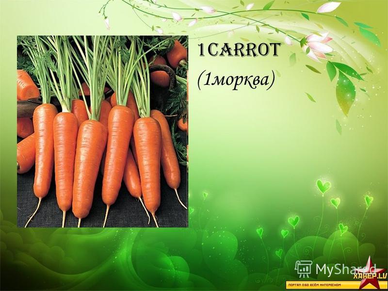 1carrot (1морква)