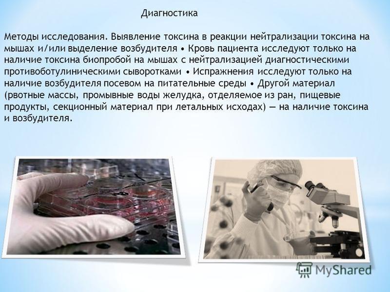 Диагностика Методы исследования. Выявление токсина в реакции нейтрализации токсина на мышах и/или выделение возбудителя Кровь пациента исследуют только на наличие токсина биопробой на мышах с нейтрализацией диагностическими противоботулиническими сыв