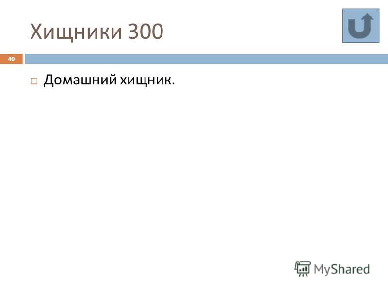 Хищники 300 40 Домашний хищник.