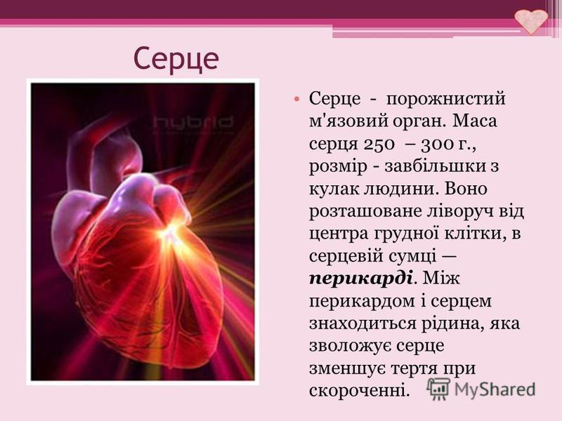 Серце Серце - порожнистий м'язовий орган. Маса серця 250 – 300 г., розмір - завбільшки з кулак людини. Воно розташоване ліворуч від центра грудної клітки, в серцевій сумці перикарді. Між перикардом і серцем знаходиться рідина, яка зволожує серце змен