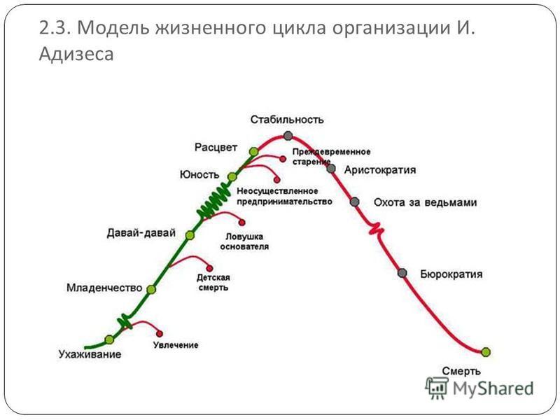 2.3. Модель жизненного цикла организации И. Адизеса