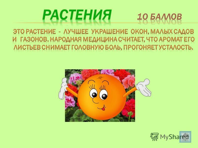 1030405020 Растения Насекомые 1020304050 Рыбы 203040 50 10 Птицы Звери 1020 102030 40 50