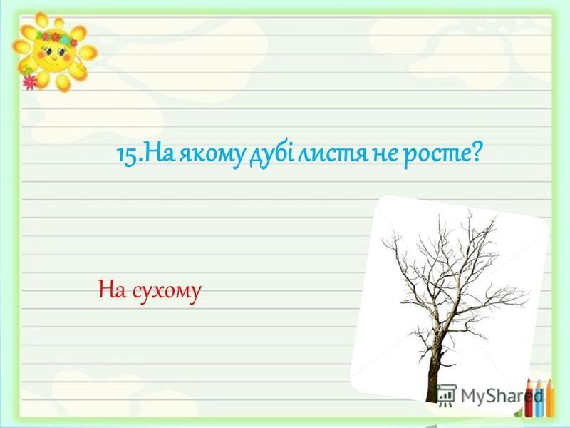 15.На якому дубі листя не росте? На сухому