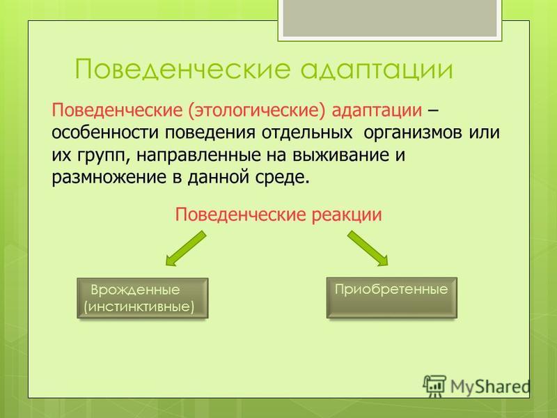 Поведенческие адаптации Поведенческие (этологические) адаптации – особенности поведения отдельных организмов или их групп, направленные на выживание и размножение в данной среде. Поведенческие реакции Врожденные (инстинктивные) Приобретенные