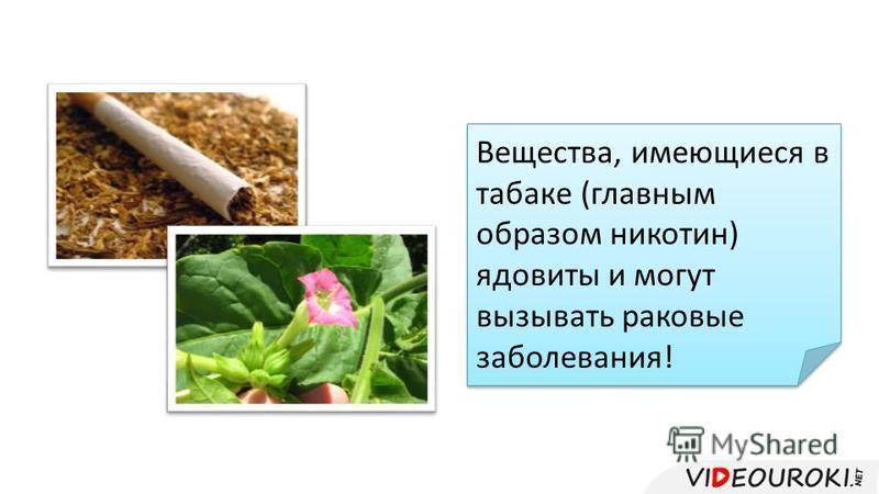 Вещества, имеющиеся в табаке (главным образом никотин) ядовиты и могут вызывать раковые заболевания!
