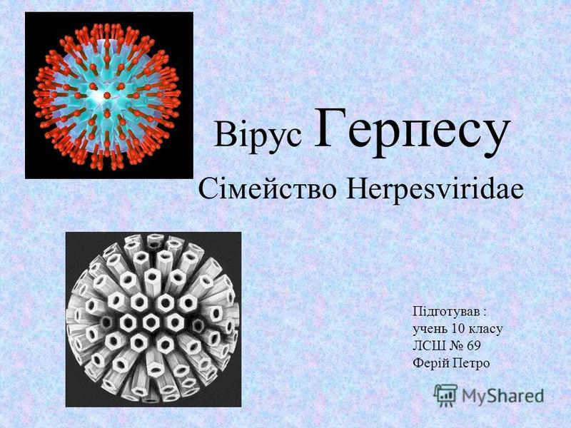 Вірус Герпесу Сімейство Herpesviridae Підготував : учень 10 класу ЛСШ 69 Ферій Петро