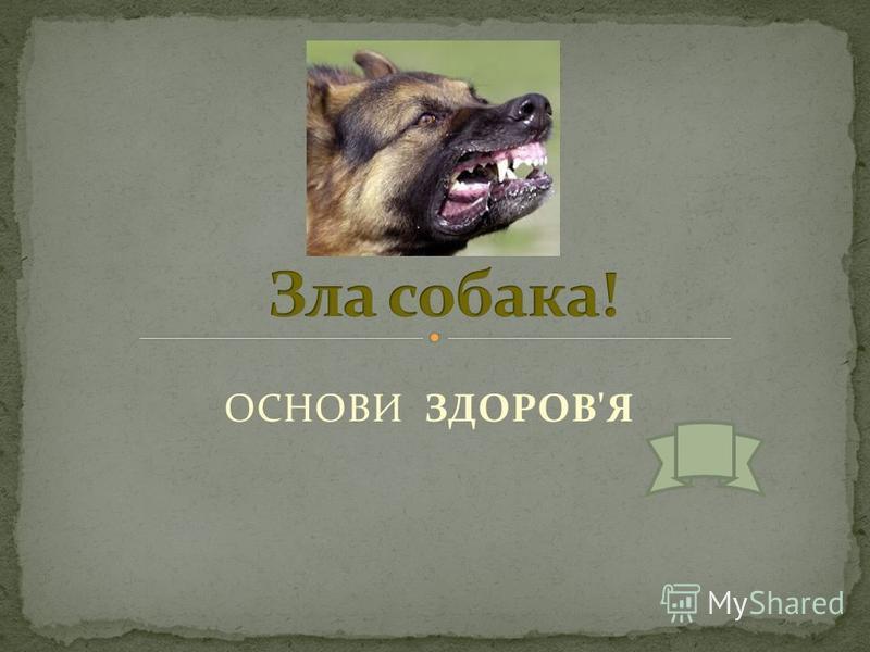ОСНОВИ ЗДОРОВ'Я