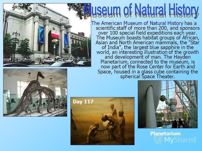 The American Museum of Natural History has a scientific staff of more than 200, and sponsors over 100 special field expeditions each year. The Museum boasts habitat groups of African, Asian and North American mammals, the