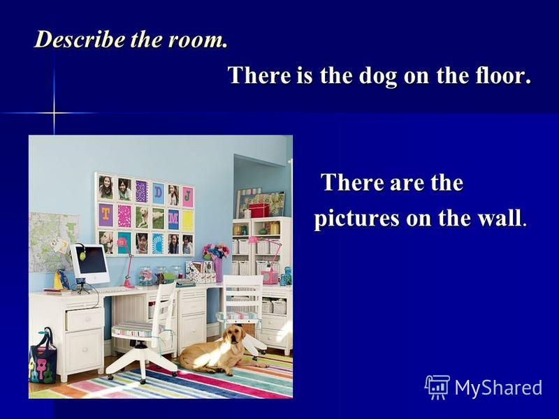 Describe the room. There is the dog on the floor. There is the dog on the floor. There are the There are the pictures on the wall. pictures on the wall.