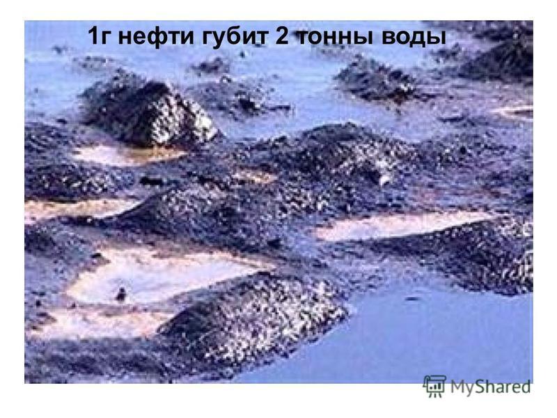 1 г нефти губит 2 тонны воды