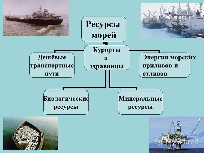 Ресурсы морей Дешёвые транспортные пути Минеральные ресурсы Биологические ресурсы Курорты и здравницы Энергия морских приливов и отливов