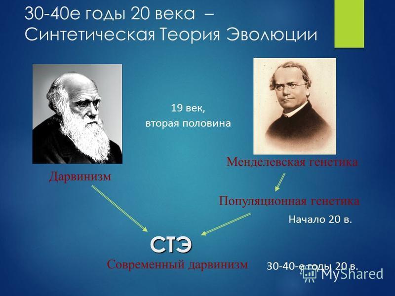 Менделевская генетика Дарвинизм 30-40 е годы 20 века – Синтетическая Теория ЭволюцииСТЭ Популяционная генетика Начало 20 в. Современный дарвинизм 19 век, вторая половина 30-40-е годы 20 в.