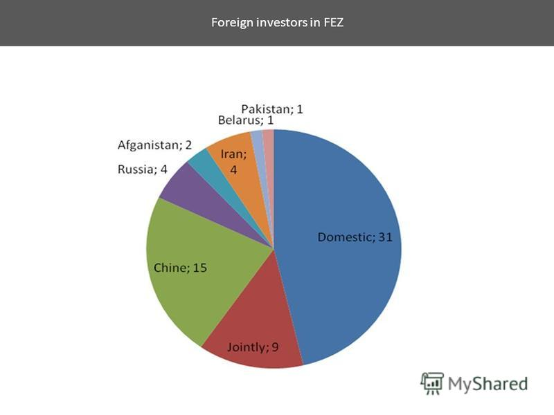 Foreign investors in FEZ