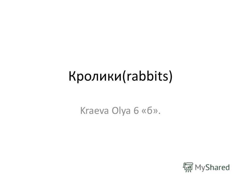 Кролики(rabbits) Kraeva Olya 6 «б».
