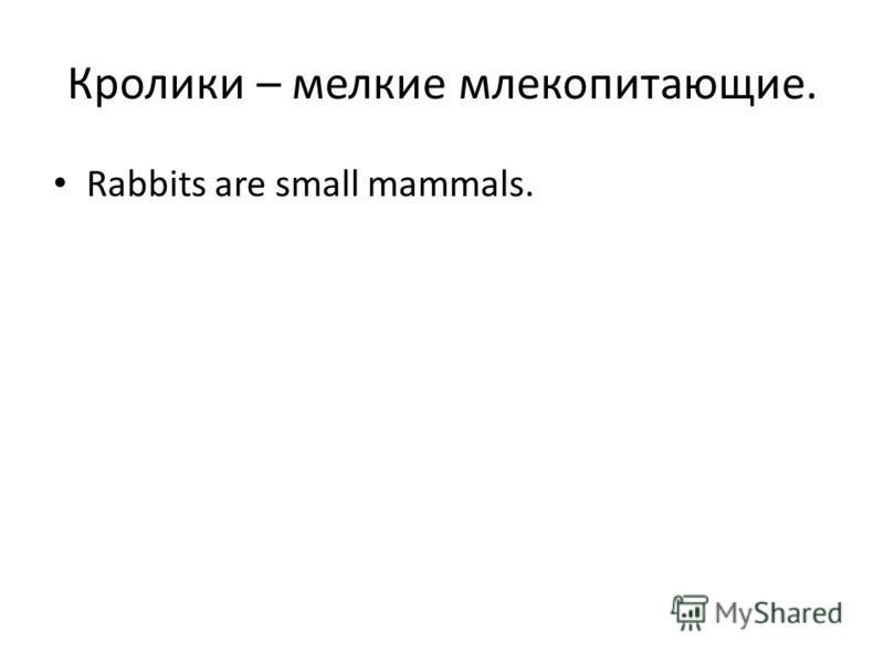 Кролики – мелкие млекопитающие. Rabbits are small mammals.