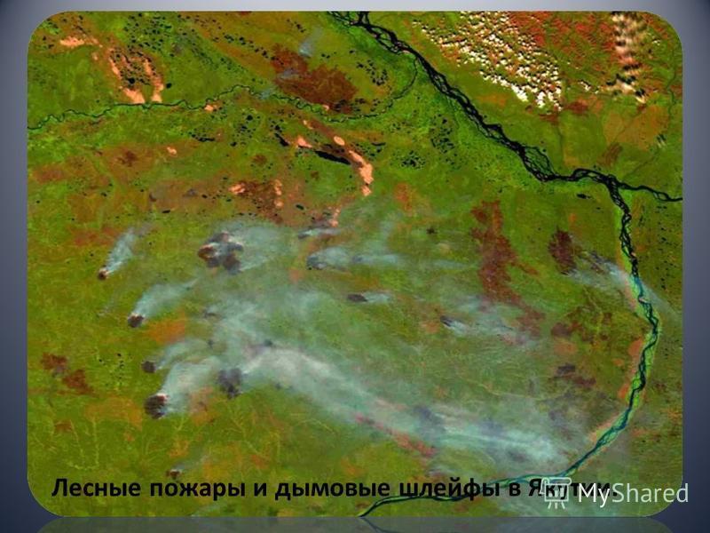 Лесные пожары и дымовые шлейфы в Якутии.