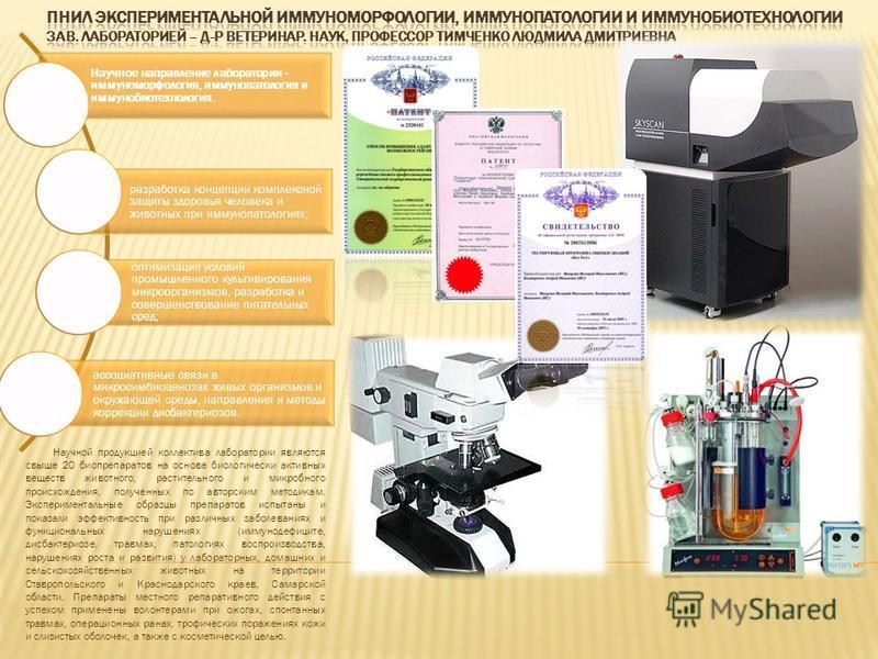 Научное направление лаборатории - иммуноморфология, иммунопатология и иммунобиотехнология. разработка концепции комплексной защиты здоровья человека и животных при иммунопатологиях; оптимизация условий промышленного культивирования микроорганизмов, р