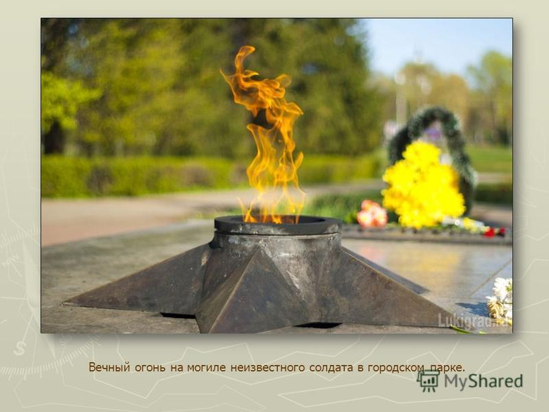 Вечный огонь на могиле неизвестного солдата в городском парке.